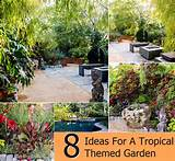 Top 8 Ideas For A Tropical Themed Garden | DIY Cozy Home World - Home ...