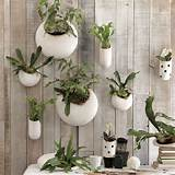 Shane Powers Ceramic Wall Planters - Contemporary - Indoor Pots And ...
