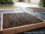 irrigating and positioning raised bed gardens adventures in diy
