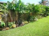 DIY Tropical Fence Border Garden | My garden | Pinterest