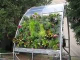 Vertical Hydroponics – The Great Space Saver | The Innovation ...