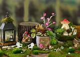 for spring. Why are these miniature gardens so popular? Fairy gardens ...