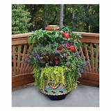 Vegetable garden idea | Gardening | Pinterest