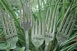 Herb garden signs ;) | Hello Herb.. | Pinterest