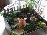 indoor fairygarden garden ideas pinterest