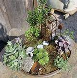 DIY Succulent Miniature Fairy Garden Ideas