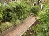 garden footpath fence stone designing garden ideas for small garden