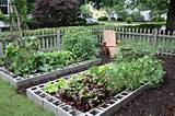 Cinder Block Raised Beds | Vintage Kids in a Modern World
