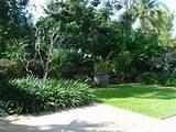 Hortulus Landscape Design & Construction Formal Tropical Garden