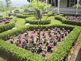 perennial small garden designs perennial small garden designs