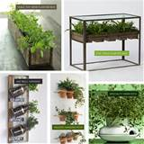 DIY Indoor Herb Gardens