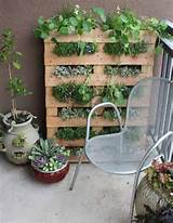 Or A pallet garden for a space with no room. Great idea using pallets ...