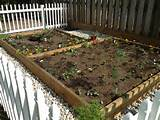 raised bed vegetable garden raised garden ideas pinterest