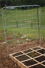 square foot gardening completed trellis garden dreams pinterest