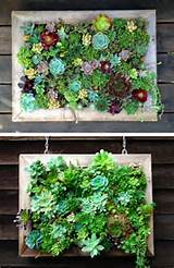 15 inspiring and creative vertical gardening ideas and designs the