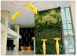 Indoor vertical garden | Garden design: vertical gardens | Pinterest