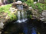 Backyard Pond Design: Koi Pond Designs: Waterfall Design: Pond ...