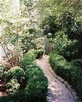 Crushed Stone Path - A gravel pathway lined with boxwood