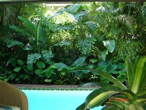 Gardens Ideas, Florida Landscaping, Tropical Landscapes, Florida ...