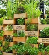 top 10 cool vertical gardening ideas