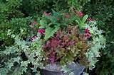 fall garden decorations with fall container garden ideas and flowers