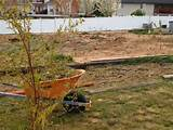 early spring garden - Tips on getting it ready | Backyard | Pinterest