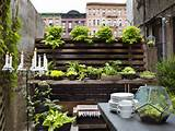 Urban Gardening Design Ideas : HGTV Gardens