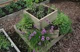 small herb garden Small Herb Garden
