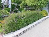 cinder blocks for borders landscape edging design ideas