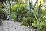 Small Garden Landscaping Ideas for Front of House