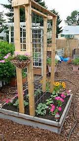 square foot gardening this link has a ton of really easy garden ideas