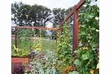 vertical gardening gronomics outside ideas garden pinterest