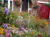 perennials border garden full sun pinterest