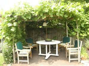 grape trellis plans | Our Cozy Backyard Retreat: The Grape Arbor ...