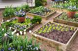 Beautiful raised bed vegetable gardens