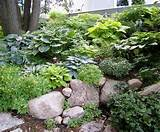 hillside gardens ideas rocks gardens side yard shades plants gardens ...
