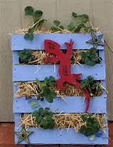 Strawberry Pallet- I love this!