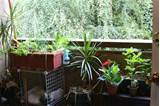 Excellent Small Apartment Balcony Garden Ideas 3456 x 2304 · 4274 kB ...