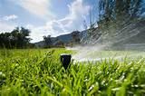 water irrigation gardening tips garden guides