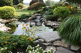 outdoor gardening creative landscape design with water garden