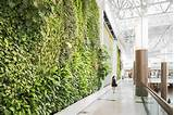 green plant and vertical garden walls furniture home design ideas