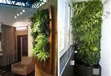 Gardening | Newhouseofart.Com Gardening | Dream House Architecture ...