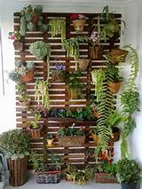 David Design: Jardim Vertical