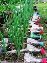 recycling in garden green gardening recycling ideas