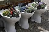 garden toilet bowl planters gardenpuzzle online garden planning