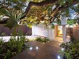 contemporary tiered garden with lighting interior design australia