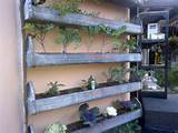 Patio herb garden | Gardening | Pinterest