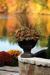 Flower Container, Gardens Ideas, Fall Containers, Fall Planters, Fall ...