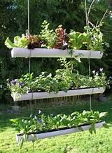 rosely pignataro ideias recicladas para o jardim