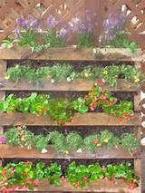 Interesting vertical garden. | Pallet Ideas | Pinterest